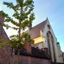 Sint-Jan_De_Doperkerk_Leuven